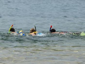 Nurkowanie w Adriatyku