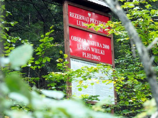 Rezerwat Przyrody Luboń Wielki