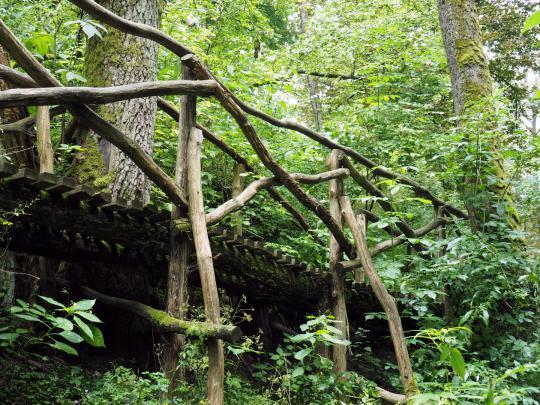 Rezerwat nad Tanwią